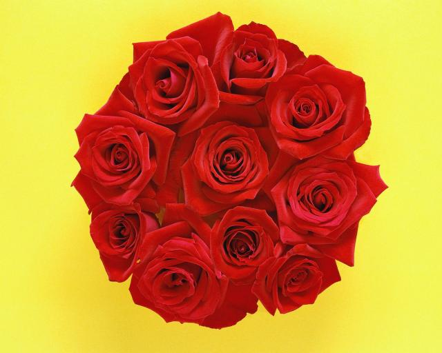 Picture Of Red Roses Bride Bouquet.jpg Hi-Res 1080p HD