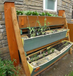 Vertical vegetable garden ideas photos.PNG