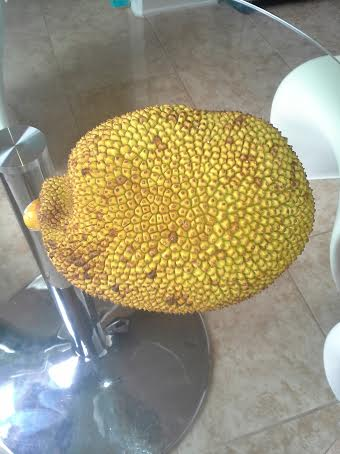 Whole Jackfruit picture.jpg Bumpy Texture Fruit