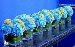 Trendy center piece with blue and yellow flowers with square vases.PNG