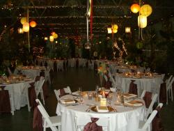 photo of wedding decorations center pieces.jpg
