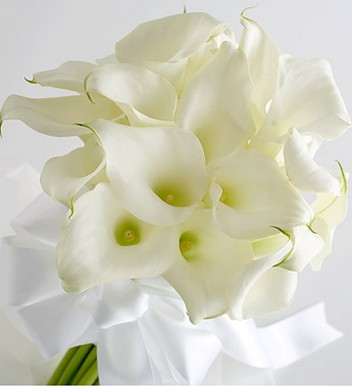 White Miniature Calla Lily Bride's Bouquet picture.jpg