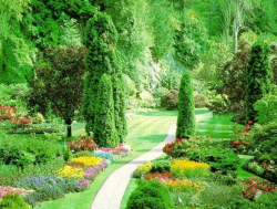 Beautiful garden photos with fulll of colorful flowers and elegant trees.PNG