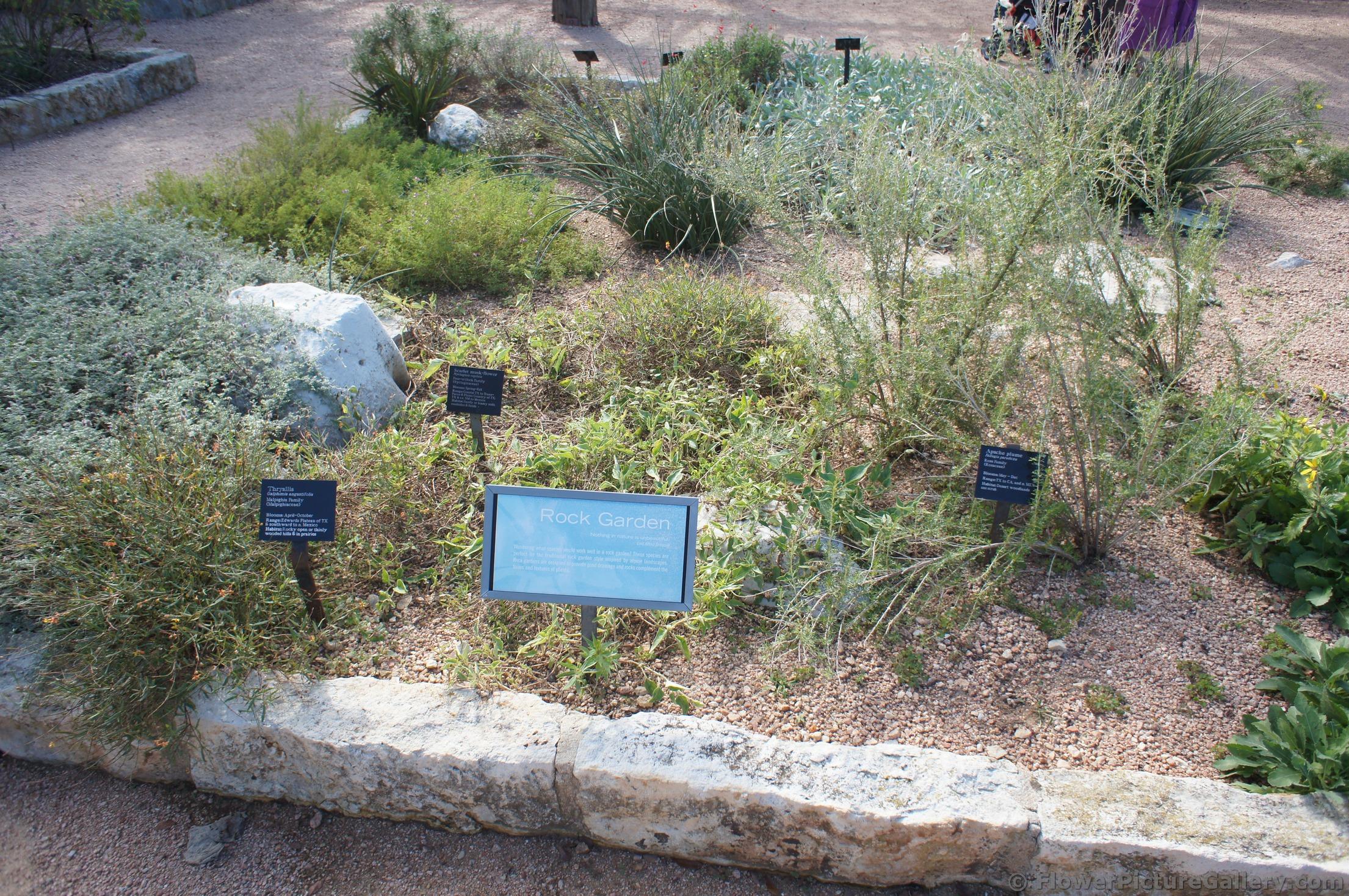 Rock Garden At Lady Bird Johnson Wildflower