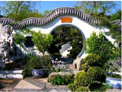 The Chinese Moon Gate Garden.JPG
