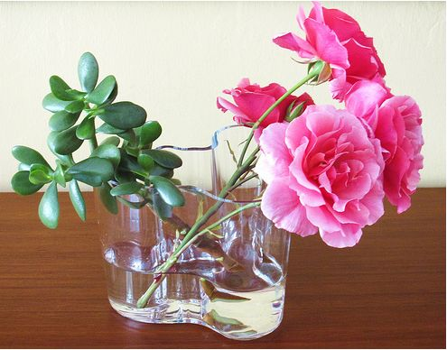 Glass arrangement with bright pink flowers and green photos.JPG
