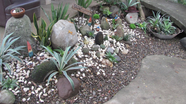 Interesting Cool Cactus Garden With Small And Big Size Cactuspng With Cactus  Garden Designs.