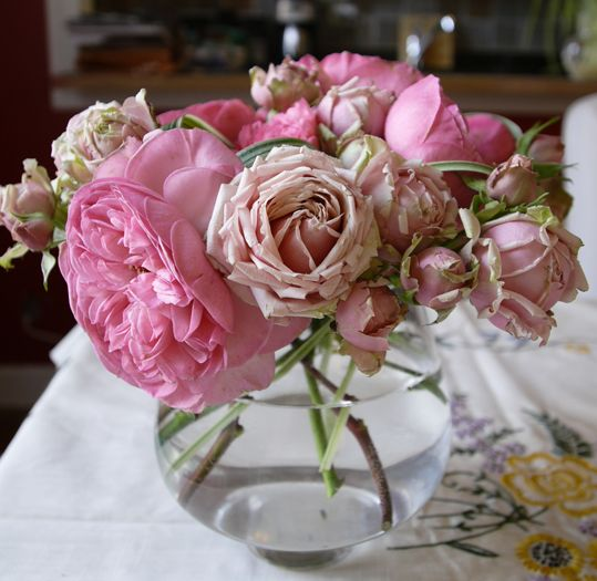 Picture Of Light Pink Roses In Different Sizes Jpg
