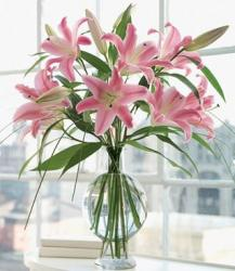 Pink lily flowers in cool round glass vase photo.JPG