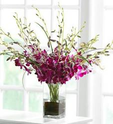 Purple orcide flowers arrange with square glass vase.JPG