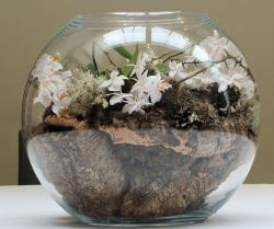 Round glass arrangement with small white flowers and wood pict.JPG