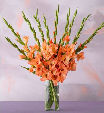 Sunrise Gladiolas in pretty orange arrangement picture.JPG