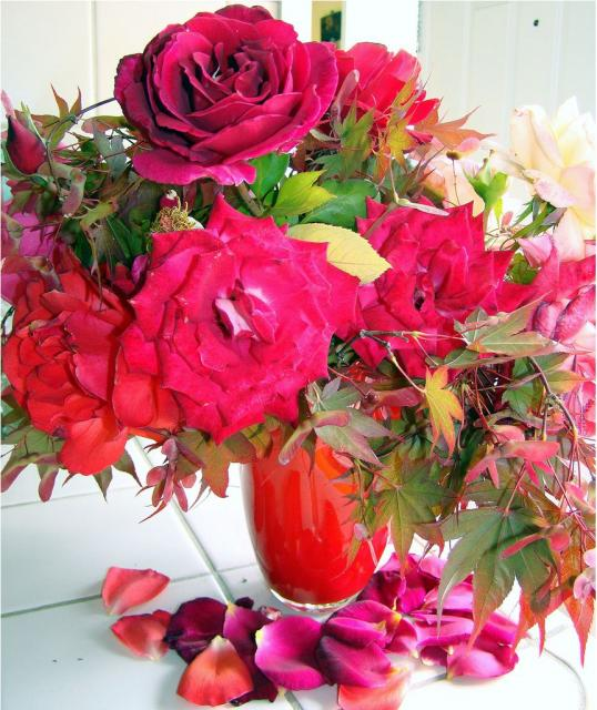 bright red and pink flowers arrangement photo jpg hi res