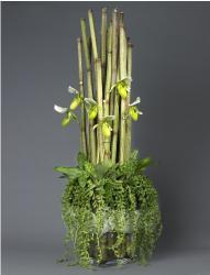Cool tall and green arrangement with small white flowers arrangement photo.JPG